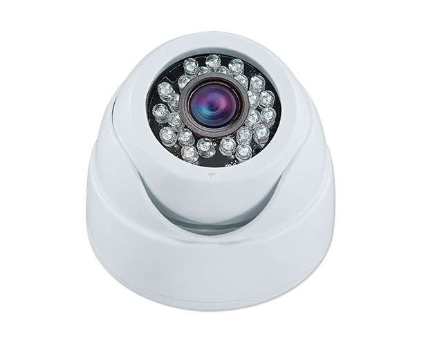 White Decoy Eyeball Dome Camera With IR LEDs