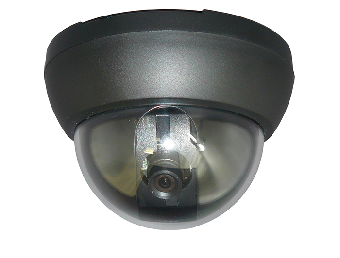 Genie Day/Night Mini Dome Camera with 3.6mm Fixed Lens
