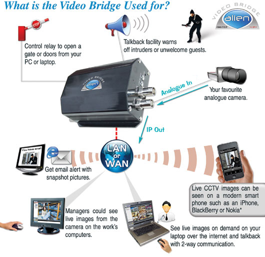 video bridge